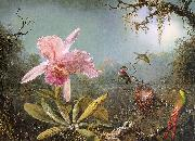 Martin Johnson Heade Cattleya Orchid Three Brazilian Hummingbirds China oil painting reproduction