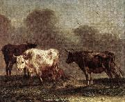 POTTER, Paulus Cows in a Meadow af China oil painting reproduction