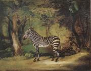 George Stubbs Horse China oil painting reproduction