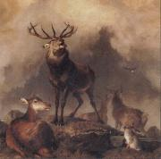 Sir Edwin Landseer A Majestic Gathering China oil painting reproduction