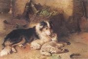 Walter Hunt The Shepherd-s Pet China oil painting reproduction