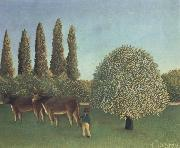 Henri Rousseau THe Pasture China oil painting reproduction