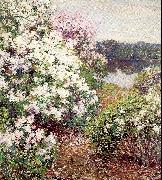 Metcalf, Willard Leroy Mountain Laurel China oil painting reproduction