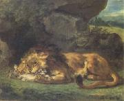 Eugene Delacroix Lion Devouring a Rabbit (mk05) China oil painting reproduction